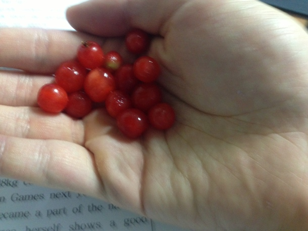 I eated the red berries